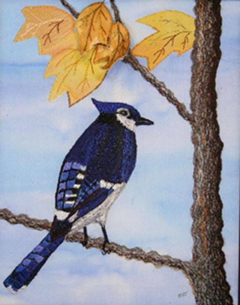 blue_jay_in_autumn