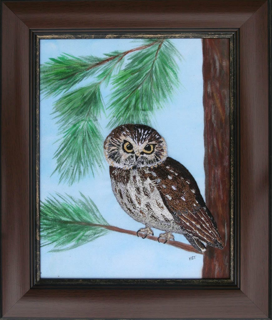 Saw Whet Owl -thread applique